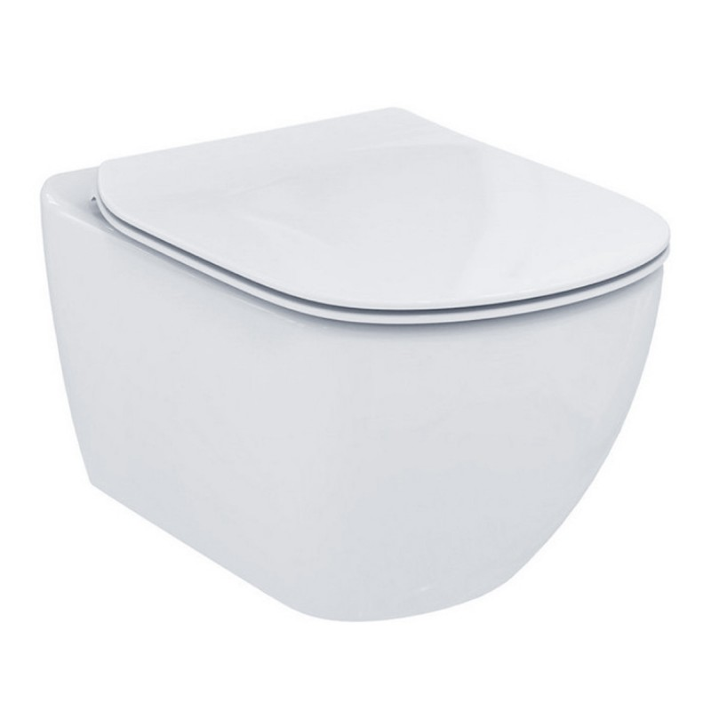 Sedile Wc Ideal Standard Serie Tesi.Ideal Standard Sedile Wc A Ribaltamento Tradizionale Tesi T352801