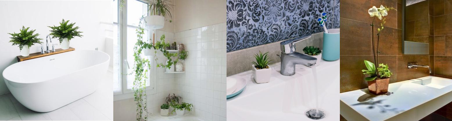 Come arredare il bagno con le piante ornamentali: tanti consigli ...