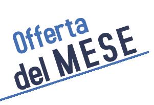 Bidet per anziani o disabili vendita online italiaboxdoccia for Casa prefabbricata offerta del mese