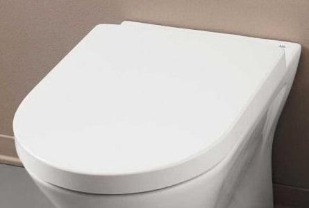 Sedili Wc Per Disabili : Rak sedile wc chiusura ammortizzata flat resort